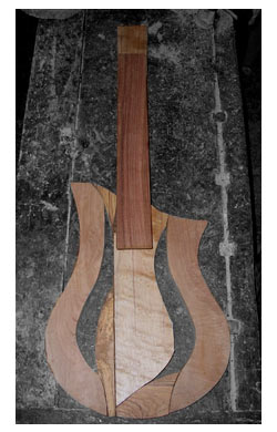 chitarra classic solid body